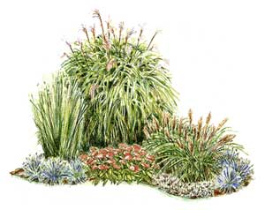 Growing for for Planting plans with grasses